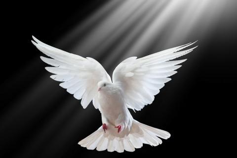 Molitva Duhu Svetomu