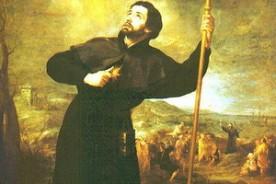 Sv. Franjo Ksaverski, zaštitnik