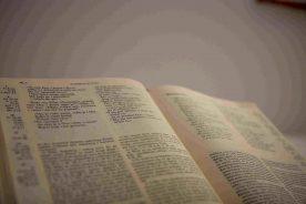 Bogoslovi o Božjoj Riječi