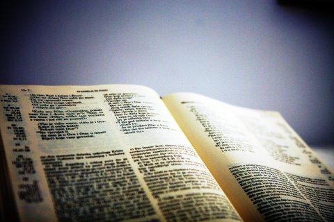 Uzalud mi sav zakon i istina ako nemam Ljubavi! – promišljanje naših bogoslova